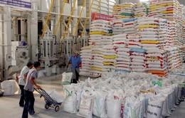 """""""Nóng"""" giá gạo xuất khẩu, doanh nghiệp gặp khó"""