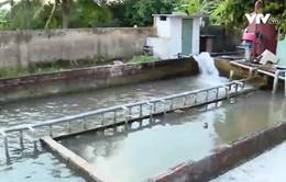 Người dân nông thôn Hải Phòng mong chờ nước sạch