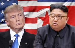 Nhật Bản khẳng định ủng hộ thành công của hội nghị thượng đỉnh Mỹ - Triều