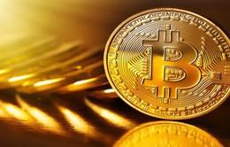 Nhiều công ty đào Bitcoin đồng loạt ngừng hoạt động