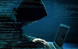 Sử dụng phần mềm không bản quyền làm tăng nguy cơ bị tấn công