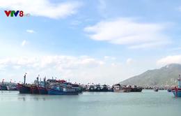 Tàu dịch vụ nằm bờ, ngư dân nợ chồng chất