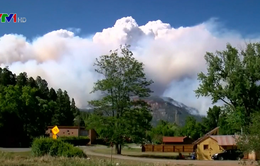 Hàng nghìn người tại Colorado (Mỹ) sơ tán vì cháy rừng dữ dội
