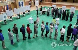 Hàn Quốc tiến hành bầu cử địa phương