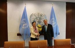 Đại sứ Nguyễn Phương Nga gặp Tổng Thư ký Liên Hợp Quốc chào từ biệt