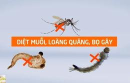 Cách phòng bệnh sốt xuất huyết hiệu quả khi bệnh vào mùa