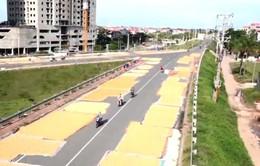 Hà Nội: Mặt đường thành… sân phơi thóc