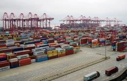 Các nước EU ủng hộ các biện pháp đáp trả thương mại với Mỹ