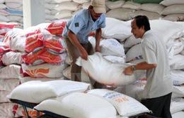 Chính phủ xuất cấp gạo cho tỉnh Kon Tum