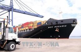 Cảng SSIT đón chuyến tàu container đầu tiên