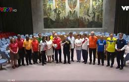 Thành viên HĐBA LHQ mặc áo đội tuyển quốc gia mừng World Cup
