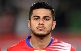 Lộ diện ngôi sao đầu tiên làm khán giả tại World Cup 2018