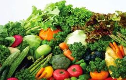 Lâm Đồng tăng thu hút đầu tư vào nông nghiệp