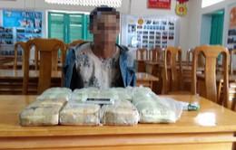 Bắt giữ đối tượng vận chuyển gần 48.000 viên ma túy tổng hợp từ Lào về Việt Nam