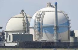 Nhật Bản tái khởi động thêm một lò phản ứng hạt nhân tại khu vực Tây Nam