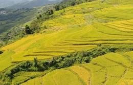 Ngày hội văn hóa du lịch vùng cao Na Hang, Tuyên Quang