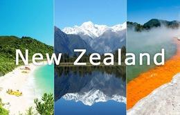 New Zealand dự định áp thuế mới với du khách quốc tế