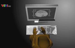 Xây dựng khuôn khổ pháp lý cho không gian mạng