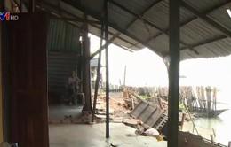 Thiệt hại lớn do sạt lở ở Đồng bằng sông Cửu Long