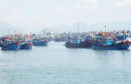 Thời tiết đang ảnh hưởng đến hoạt động đánh bắt của bà con ngư dân Khánh Hòa