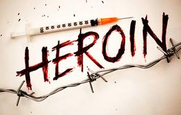 Hơn 30% người nghiện heroin mới ở Mỹ bị phụ thuộc vào thuốc