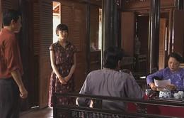 Mỹ nhân Sài Thành - Tập 20: Sau khi ly dị, Thanh Trà lại gặp công tử giàu có