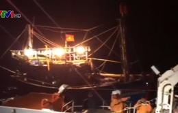 Cứu kịp thời 7 ngư dân gặp nạn trên vùng biển Vịnh Bắc bộ