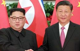 Lãnh đạo Triều Tiên Kim Jong-un hội đàm với Chủ tịch Trung Quốc Tập Cận Bình