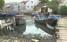 Bình Định: Bến đò biến thành bãi đổ rác