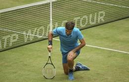 Chung kết Halle mở rộng 2018: Federer bất ngờ bại trận