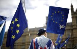 Một nửa số công ty châu Âu giảm đầu tư tại Anh vì Brexit