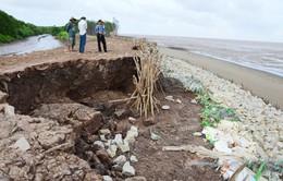 Cà Mau thuê trực thăng khảo sát sạt lở bờ biển