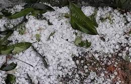 Mưa đá ở 8 tỉnh miền núi phía Bắc làm 3.188 nhà hư hỏng, tốc mái