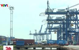 Cảng biển ùn ứ phế liệu nhập khẩu, Bộ TN&MT lập đoàn kiểm tra