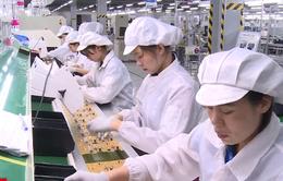 TP.HCM: Nhiều nhà đầu tư ngoại góp vốn, mua cổ phần DN Việt
