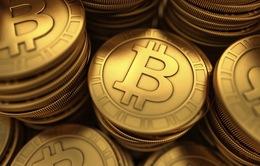 Giá Bitcoin giảm sâu, thị trường tiền điện tử Việt Nam chao đảo