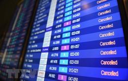 Nhiều hãng hàng không Mỹ Latin hủy chuyến bay tới Argentina