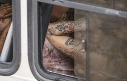 Venezuela: Tù nhân có vũ trang bắt giữ 30 người làm con tin