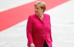 Đức tìm giải pháp tránh Chính phủ liên minh đổ vỡ