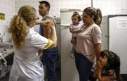 Singapore siết chặt quy định nhập cảnh phòng ngừa bệnh sốt vàng