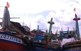 EC chưa thể bỏ thẻ vàng với thủy sản Việt Nam