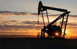 Ấn Độ bác bỏ việc dừng mua dầu Iran theo yêu cầu của Mỹ