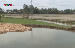 Dự án kéo dài, cầu mỏi mòn chờ… sông