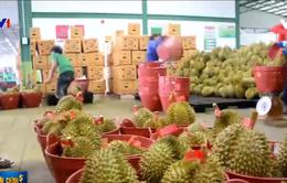 Nông sản Thái Lan rộng đường sang EU