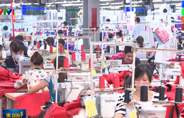 Bộ trưởng Bộ Công Thương: Xuất khẩu có thể tăng 6% khi EVFTA có hiệu lực