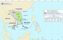 Áp thấp nhiệt đới: Đà Nẵng - Quảng Ngãi tiếp tục là trọng tâm mưa