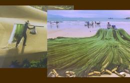 """Triển lãm """"Nông thôn mới ở vùng biển Phú Yên"""""""
