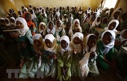 UNICEF giải ngân số tiền kỷ lục cứu trợ trẻ em