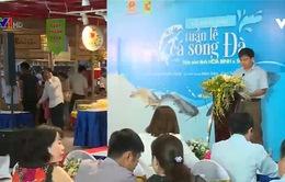 Nhiều loại cá đặc sản được bày bán tại Tuần lễ Cá sông Đà 2018