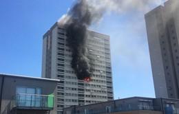 Cháy chung cư cao tầng ở thủ đô London (Anh)
